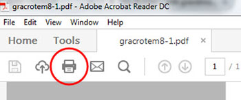Print icon in the Adobe print menu